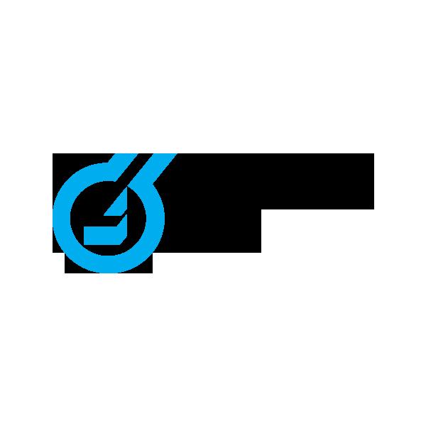logo_lhoist